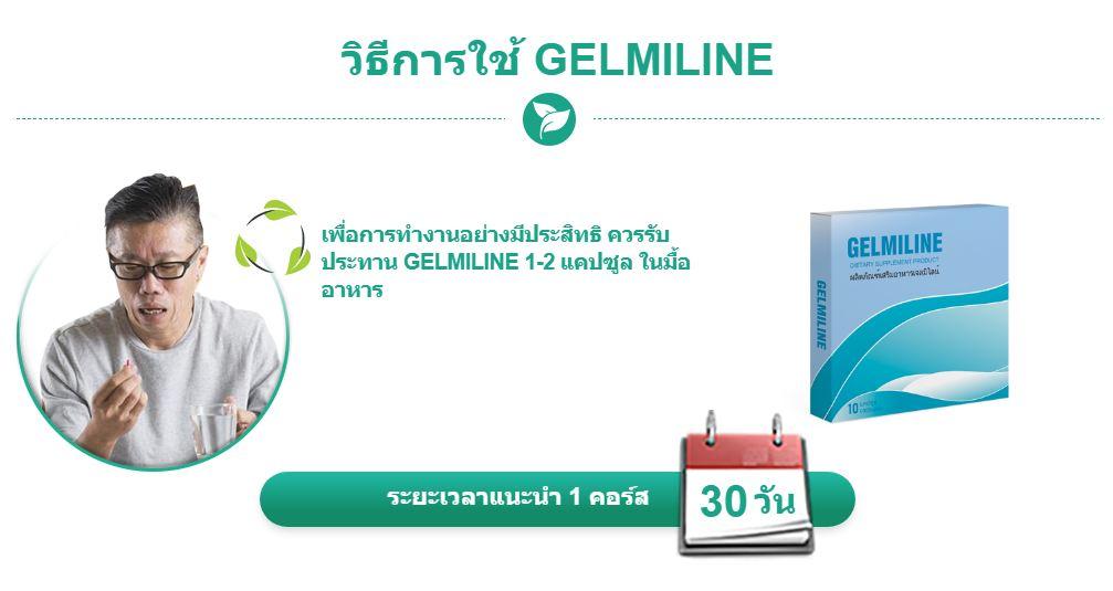 วิธีการใช้ GELMILINE